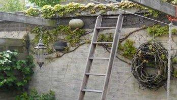 Ik kan het dak op - Michel's Moestuin