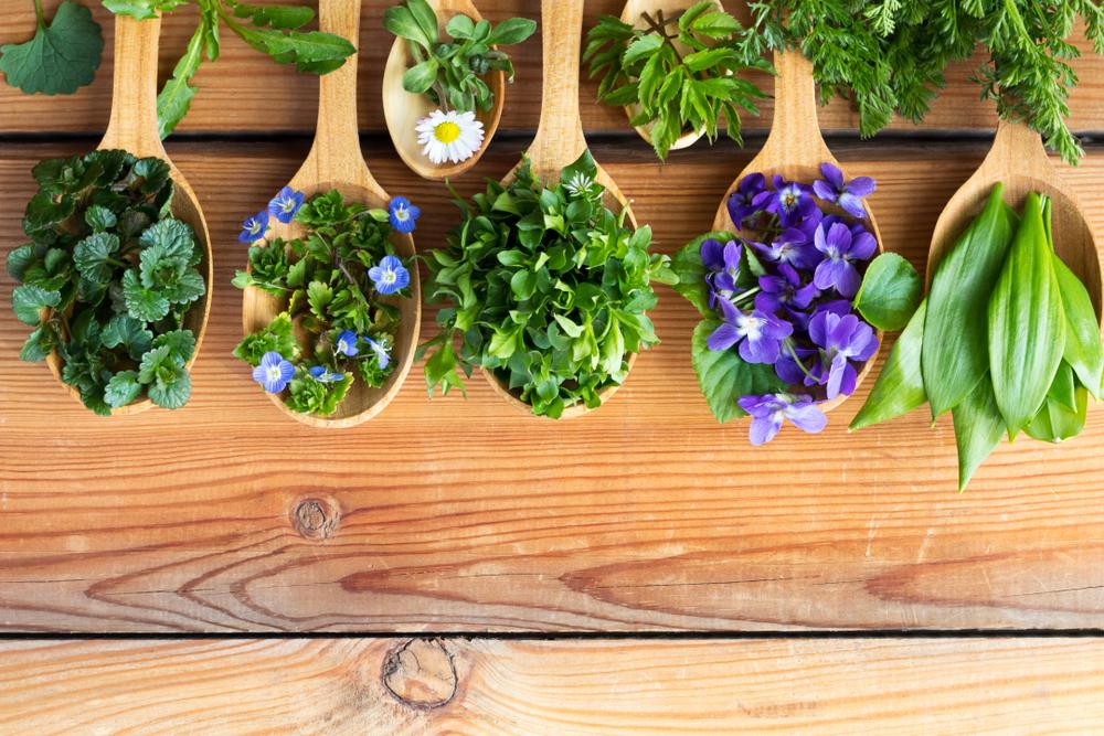 eetbare bloemen, tuinen.nl