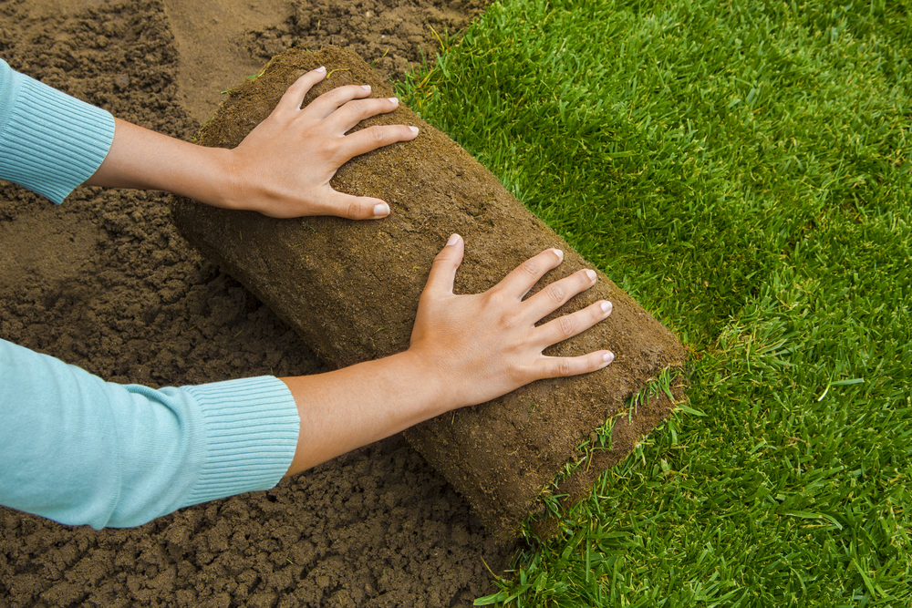 Graszoden leggen, tuinen.nl