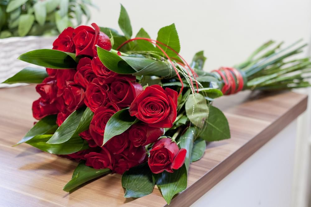 rozen stekken, rozen, roos, stekken, tuinen.nl