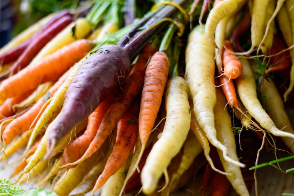 wortelen, kleuren, zelf kweken