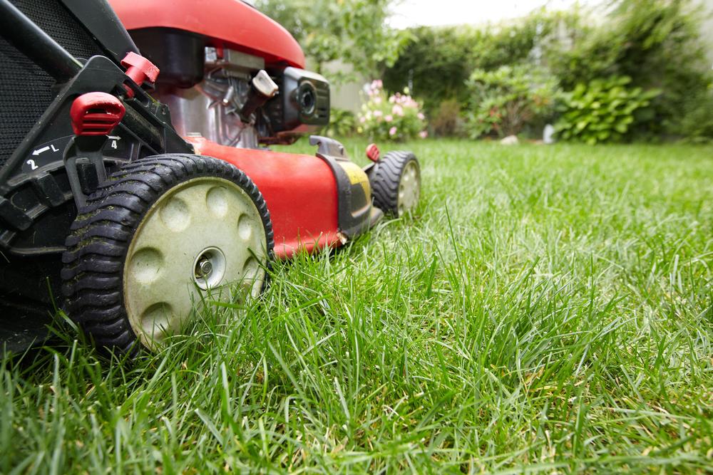 Gras maaien, grasmaaier, gazon, tuinen.nl