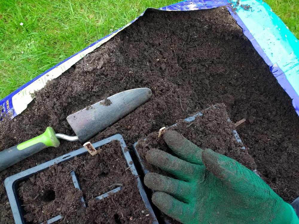 Moestuin Zelf Maken : Start een moestuin voor beginners tuinen
