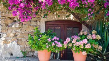 Tuinstijl de mediterrane tuin