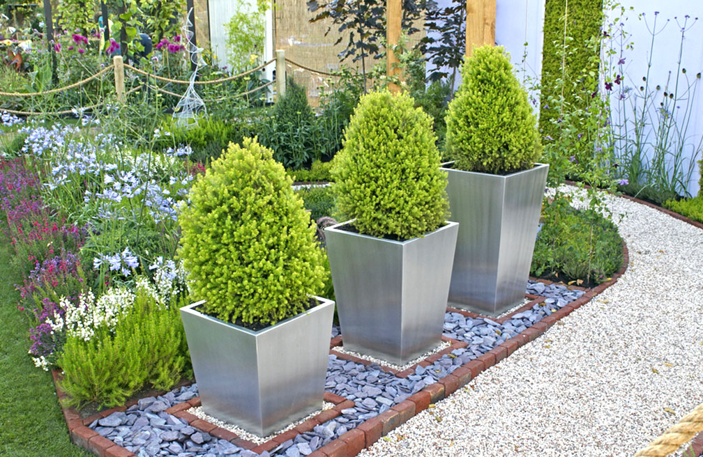 Buxus topiary in moderne trendy tuin