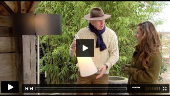 Tuinvideo: Handige snoeitips en winterse taferelen