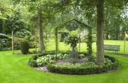 Boom Kleine Tuin : Mooie en aparte bomen voor een kleine tuin tijd voor je tuin
