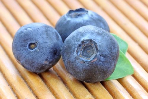 Superfoods bosbessen kweken