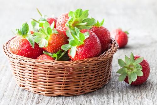 Het telen van aardbeien