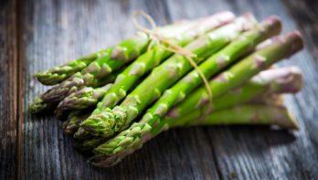 Superfood asperges kweken