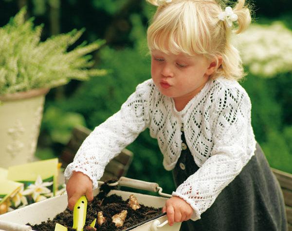Bloembollen planten najaar