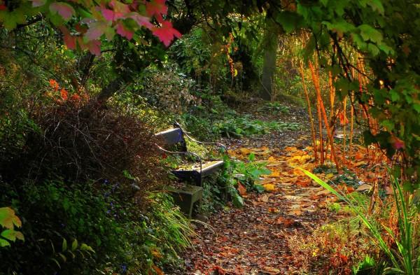 Herfst, tijd voor rijke oogst