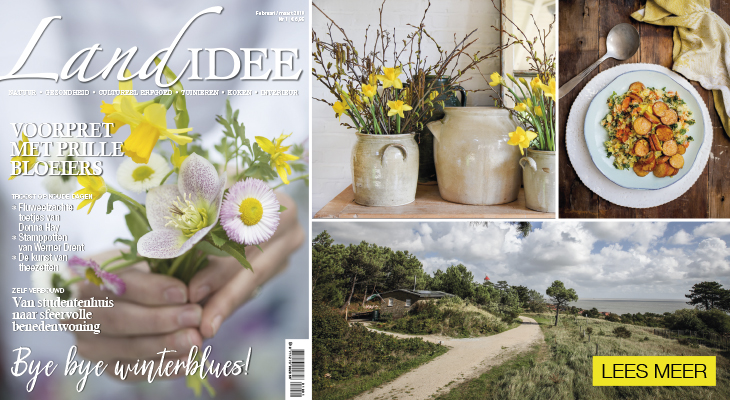 LandIdee magazine