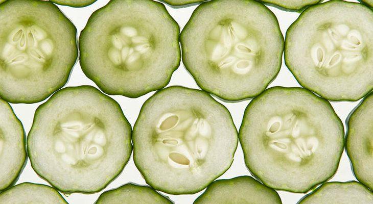 Komkommer oogsten en bewaren