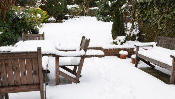 Sneeuw in de tuin