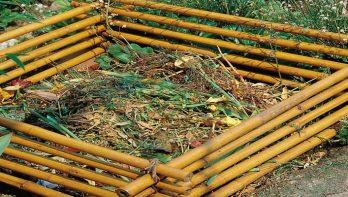 Wat mag er op de composthoop