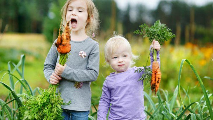 Tuinieren met kinderen
