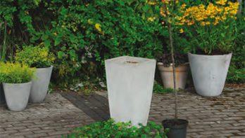 Boompje met onderbeplanting planten