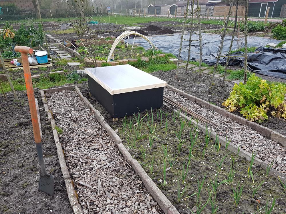 In de tuin, Michels Moestuin, moestuin, uien, knoflook, compost, tuinen.nl