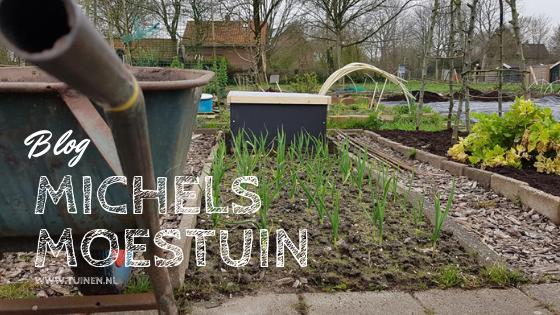 Tijd om lekker in de tuin te werken – Michels Moestuin