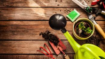 Nederland houdt van tuinieren