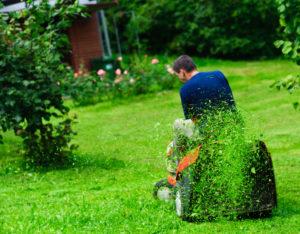 tuinieren, onderzoek, tuinmonitor, grasmaaien, onkruid wieden, snoeien, tuinen.nl