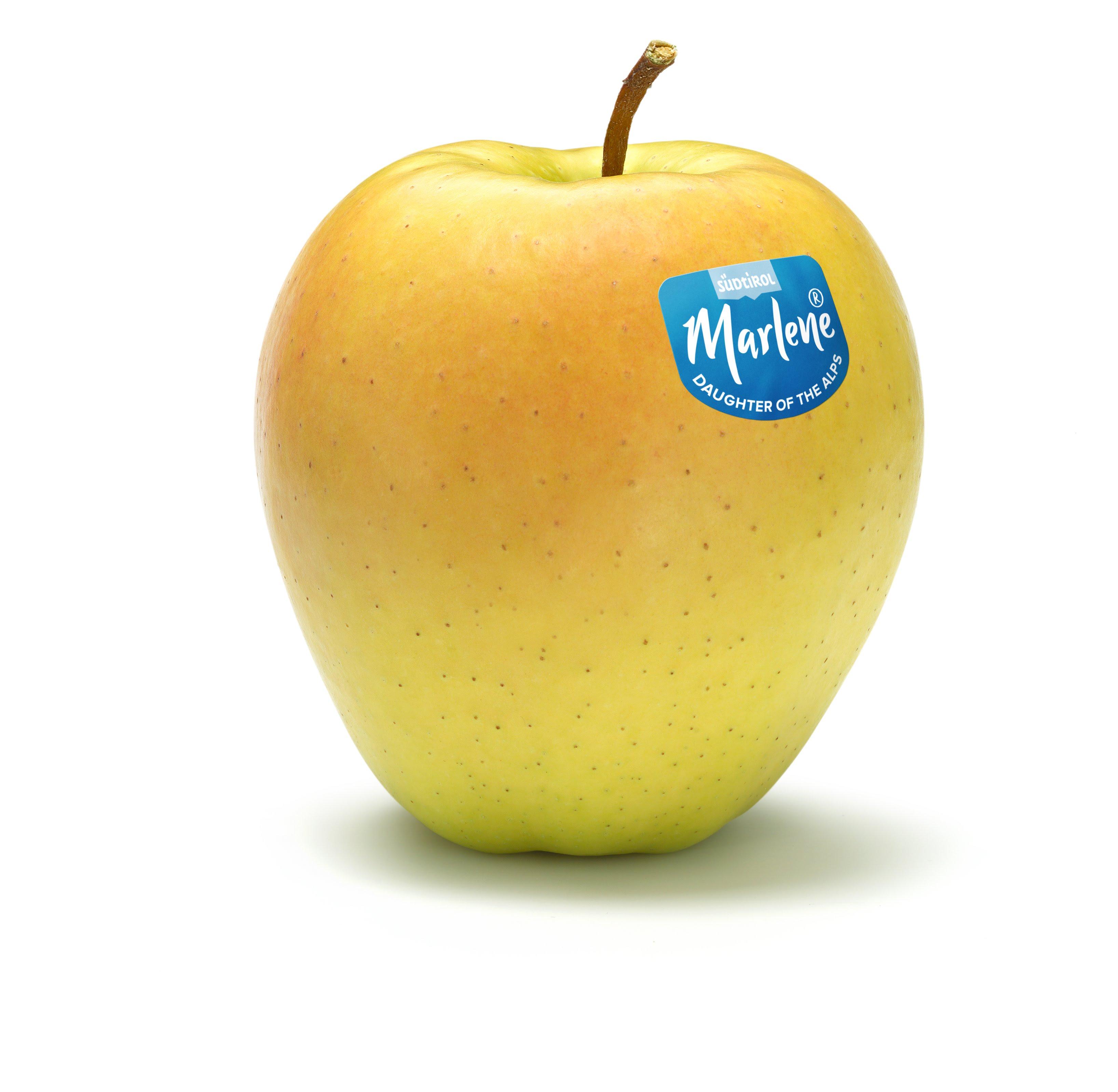 recept, vaderdag, marlene, franse appeltaart, appels, appeltaart, taart, tuinen.nl