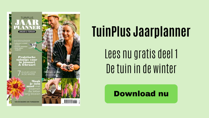 TuinPlus Jaarplanner 2020 download