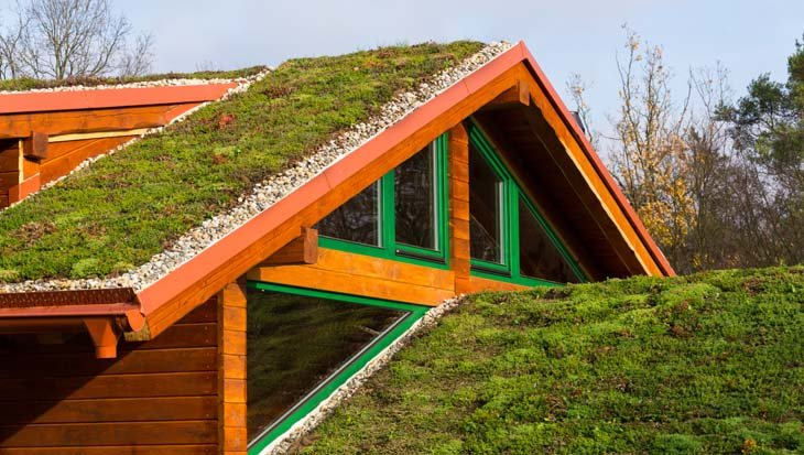groendak huis