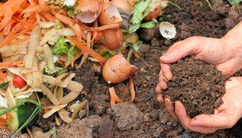 Compost als bodemverbeteraar