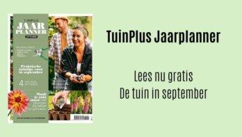 Gratis de maand september van de Jaarplanner lezen
