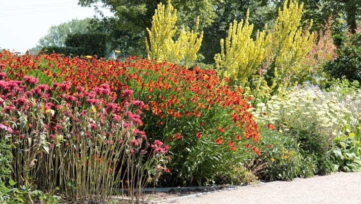 De tuin aanplanten in de herfst