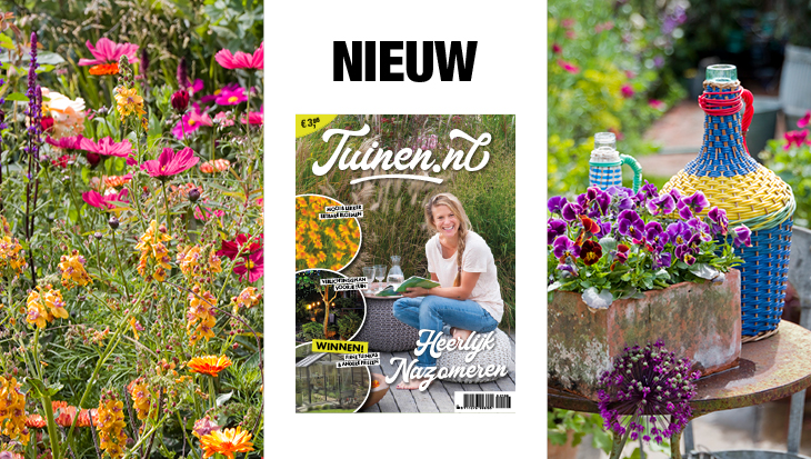 Tuinen.nl magazine 03 2021